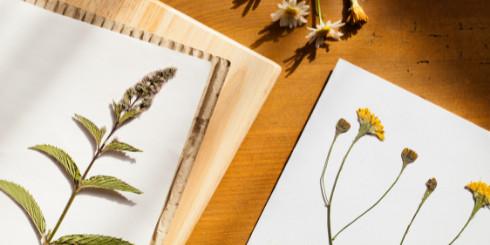 Pressed flowers on wood