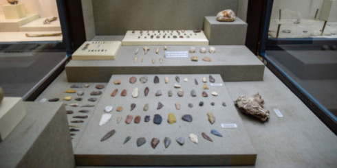 small objects in an exhibit