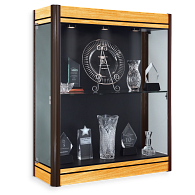 Waddell Contempo Wall-Mount Exhibit Case