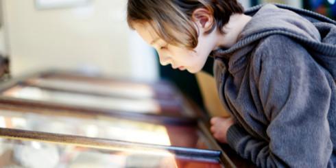 Child looking inside glass exhibit case