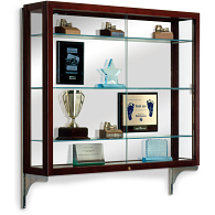 Waddell Heirloom Wall-Mount Exhibit Case with Mirrored Back