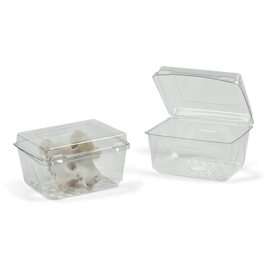 Gaylord Archival® Clear PET Clamshell Flat Lid Boxes (125-Pack)