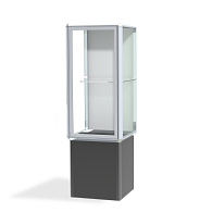 Waddell Spotlight Exhibit Case with Lighting