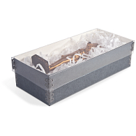 Gaylord Archival® Clear Shallow Lid Box