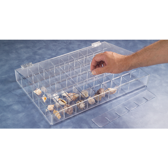 Large Adjustable Acrylic Specimen Tray with Lid